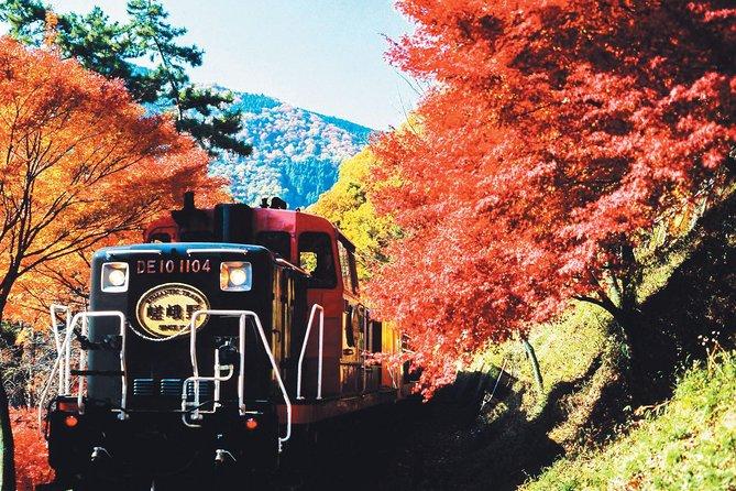 Sagano Autumn Foliage Train Ride Plus Höjdpunkter