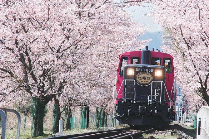 Sagano Romantic Train & Arashiyama, Kiyomizudera, Fushimi Inari Taisha Day Tour