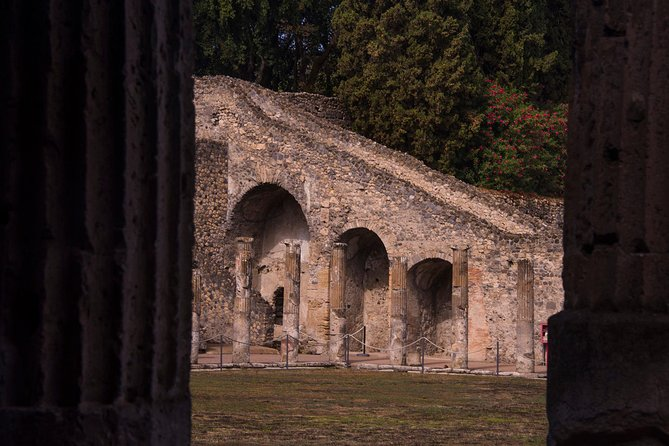 Pompeii ruins and Archaeological Museum private tour from Naples or Sorrento