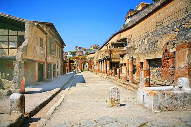 Private Skip-the-Line Ancient Pompeii Herculaneum and Oplontis Ruins Tour
