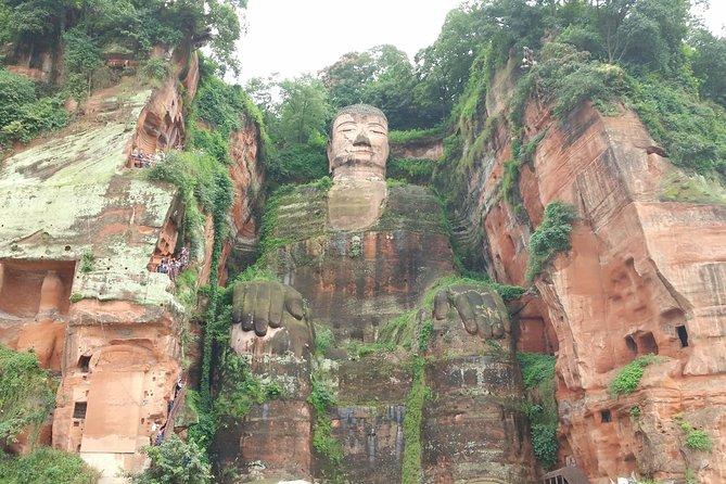 Chengdu Highlights Tour of Panda Base and Leshan Giant Buddha
