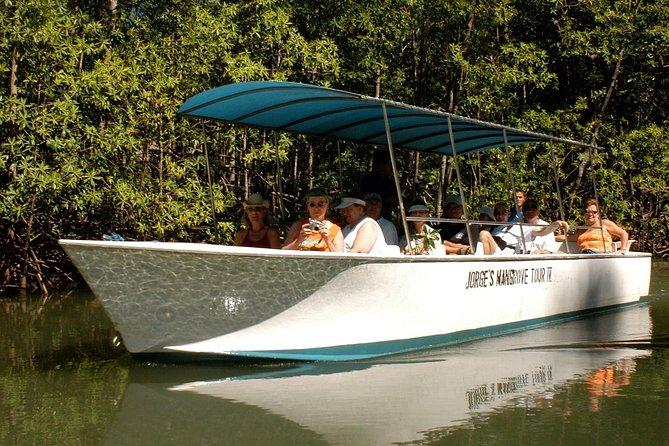 Damas Mangrove Boat Tour