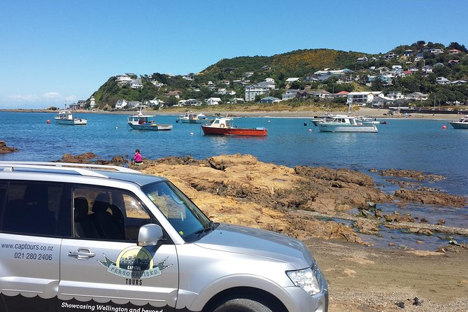 Full-Day Wellington Sightseeing Tour