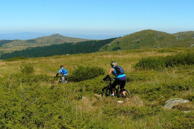 Vitosha Trail Hunter Bike Tour from Sofia
