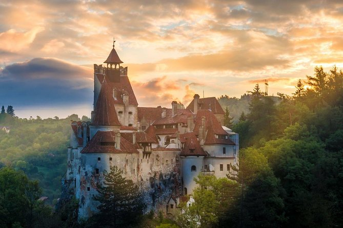 Zarnesti Bear Sanctuary and Dracula's Castle Private Tour photo 2