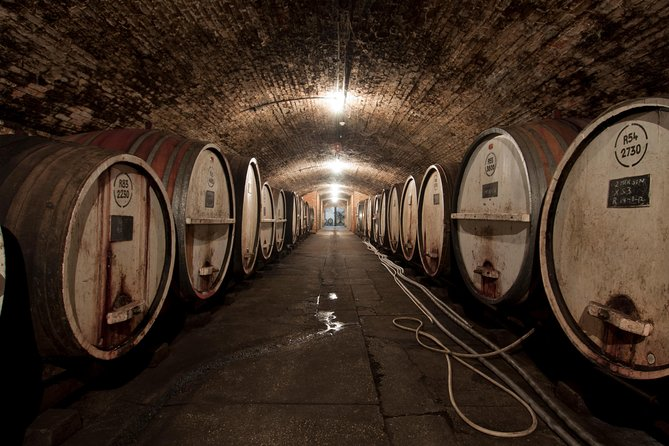 Weinbau Erfahrung mit Wein Botschafter bei Tahbilk Weingut