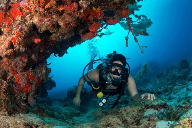 Taj Mahal Cenote Cave Diving Adventure från Cancun