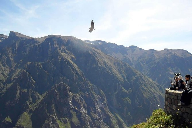 Tour Colca Canyon 2d -1n From Arequipa, Ending In Puno