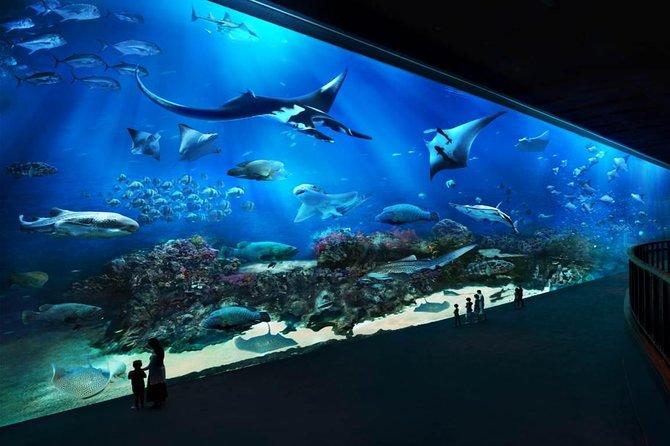 Skip the Line: S.E.A. Aquarium Day Pass Including Hotel Pickup from Singapore