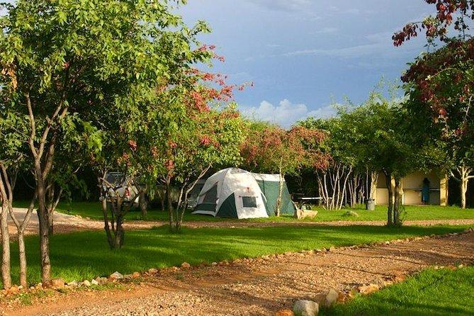 Parc national d'Etosha, 5 jours, à l'occasion d'une visite guidée depuis Windhoek