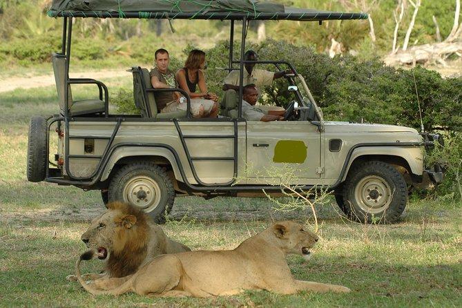5Days Tanzania Camping Safari to Lake Manyara Serengeti And Ngorongoro Crater from Arusha
