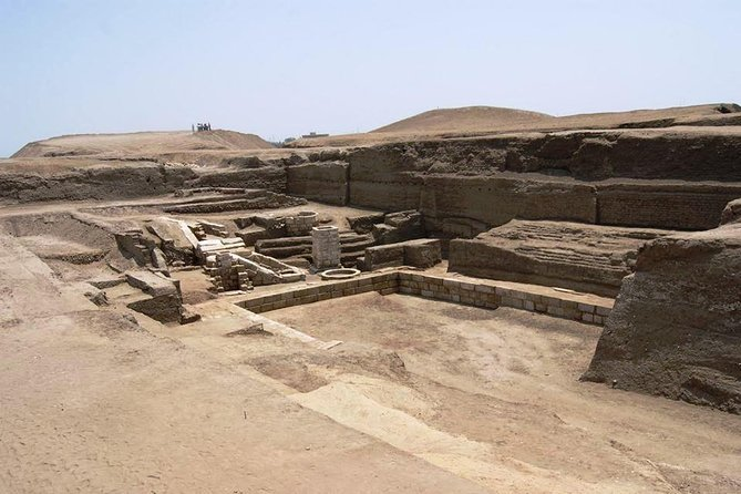 Private Tour: Full-Day Trip to Tell-Basta and San el-Hagar in the Nile Delta from Cairo photo 1
