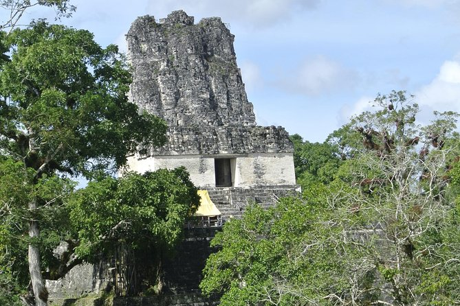 Day Trip Tikal National Park from Flores photo 3
