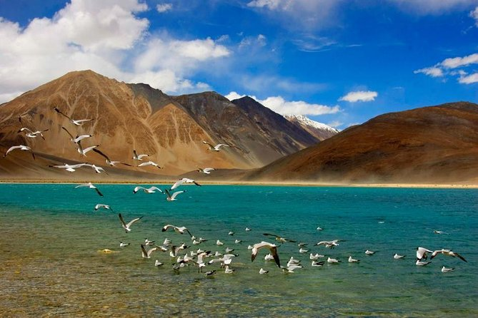 Leh and Ladakh Experience the Adventure photo 1
