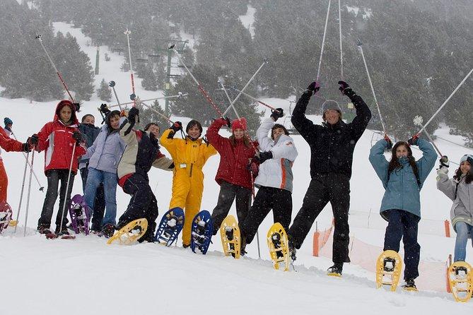 Pyrenees - Snow Experience