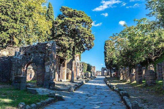 Pompeii, Positano And Amalfi Coast Cruise From Naples