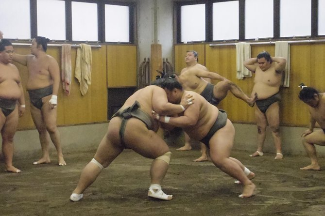 Sumo stable Morning Training Watching Tour