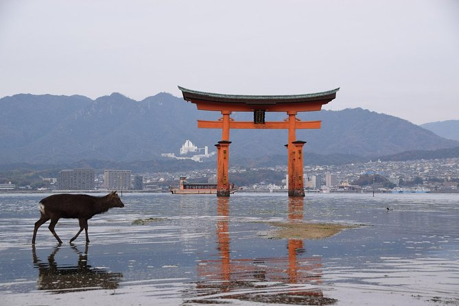 Hiroshima one day private walking Tour