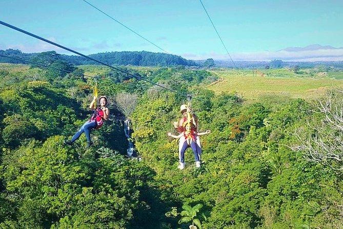 Big Island Zipline Adventure - 2 1/2 hours