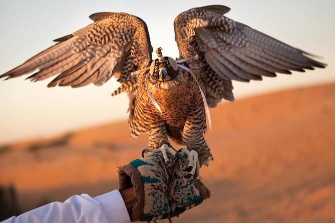 Abu Dhabi Sheikh Zayed Mosque and Falcon Hospital Day Tour 2020