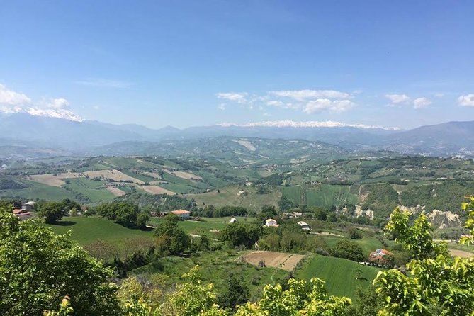 Marche and Abruzzo wine tasting tour with lunch