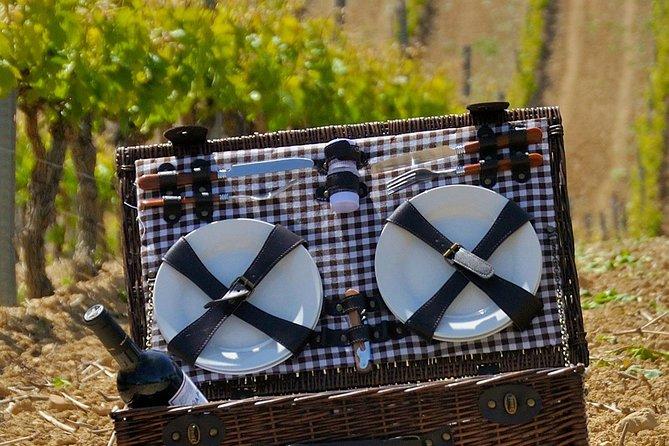 Recorrido con pícnic por las bodegas de Rioja y Laguardia con salida desde San Sebastián
