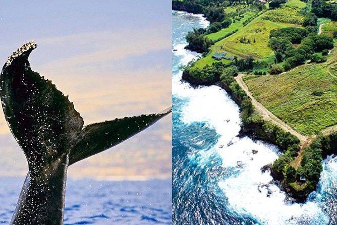 Hāmākua Historical Hawai'i Waterfall Afternoon Cruise