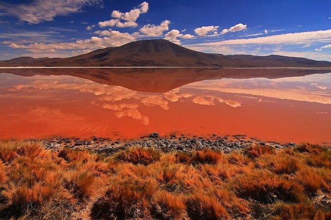 Aventure de 3jours dans le salar d'Uyuni et la laguna Colorada au départ d'Uyuni