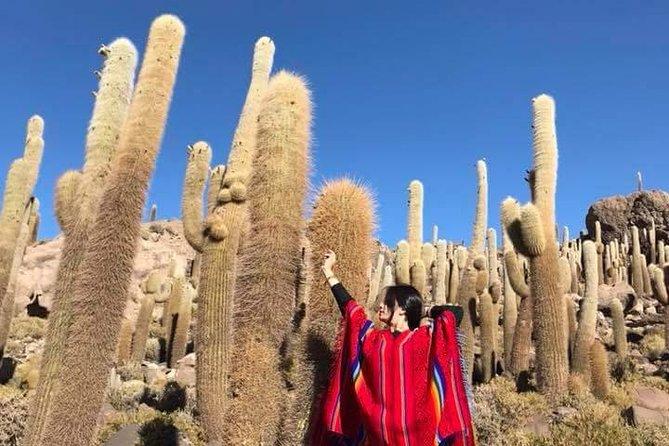 Sal Uyuni de 2 dias com pernoite em hotel 4 estrelas ou 5 estrelas, incluindo voo de La Paz