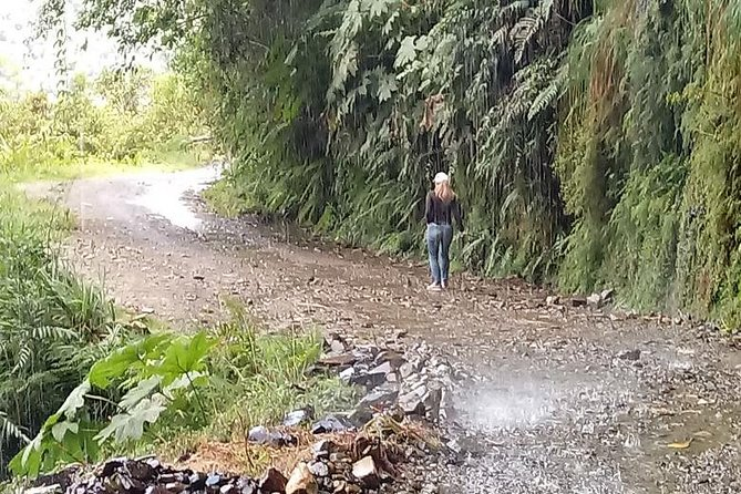 Private Tour to the Yungas Coroico The Death Route from La Paz