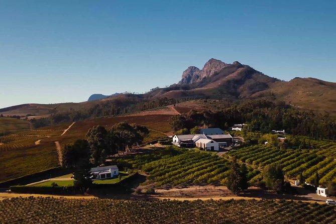 Stellenbosch, Franschoek e Paarl Winelands saindo da Cidade do Cabo