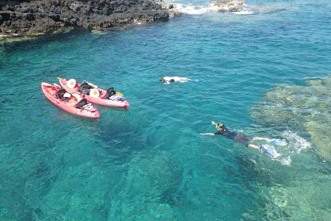 Ocean Kayak Tours