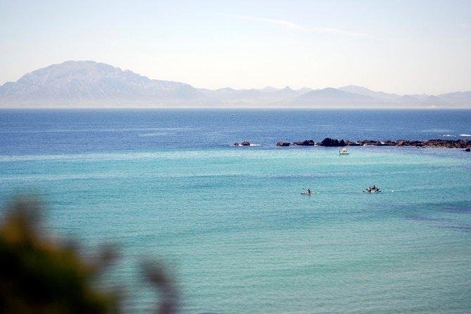 Kayak & Snorkel Tour dans le détroit de Gibraltar