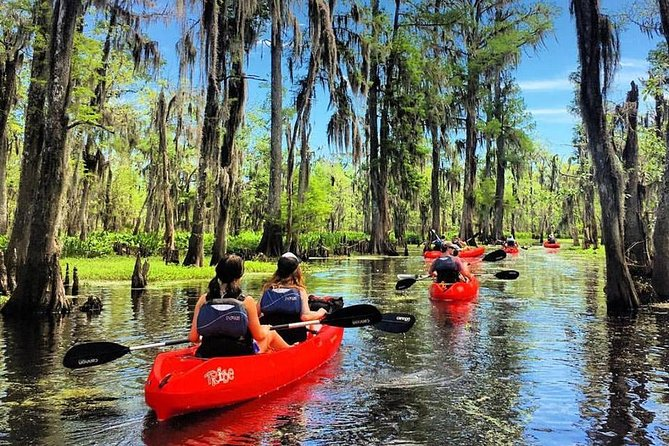 Manchac Swamp Kayak Tour