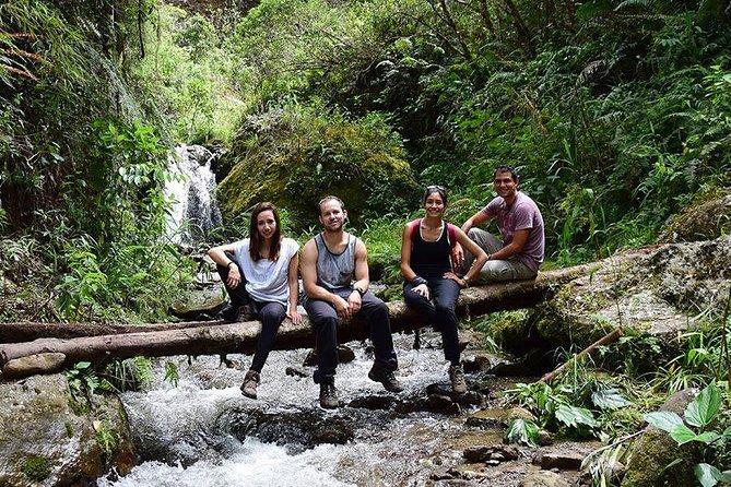 Halbtageswanderung zum Yanachaga Nationalpark