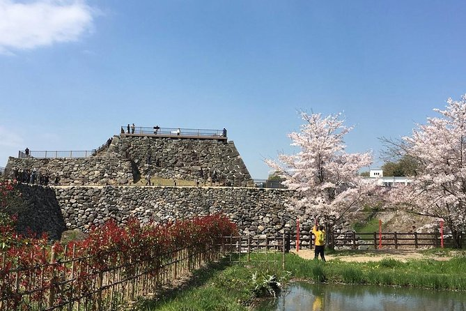 Yamato-Koriyama Castle and Goldfish Small-Group Tour from Nara photo 9
