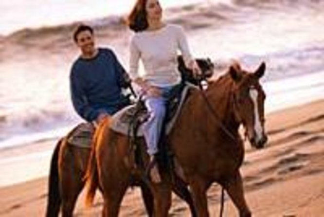 Los Cabos Horseback Riding photo 2