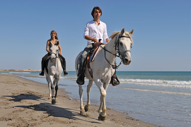 Los Cabos Horseback Riding photo 1