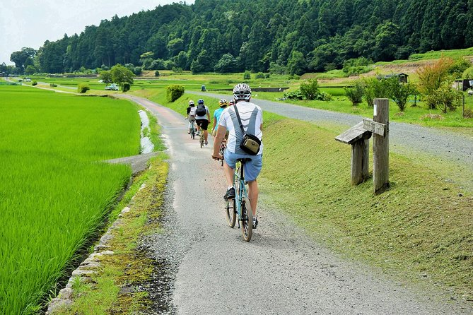 Farm to Table Local Cooking and Cycling Tour: Lake Biwa and Rice Terraces