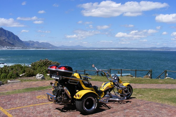 Hermanus and Whale Route Trike Tour from Cape Town