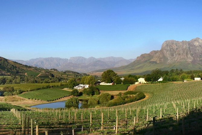 Winemaker-Led Private Wine Tasting Tours from Franschhoek photo 1