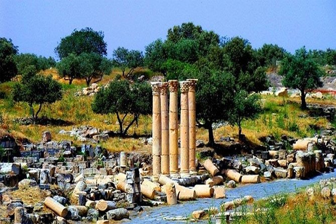 Private Full-Day Tour: Umm Qais and Ajloun from Dead Sea photo 2