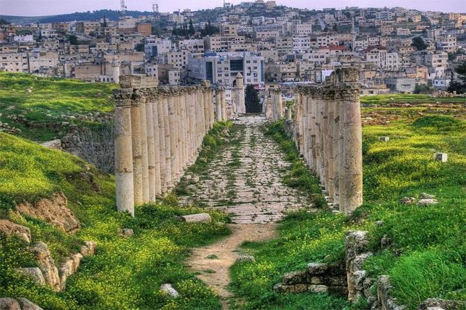 Private Jerash Half Day Tour from Dead Sea