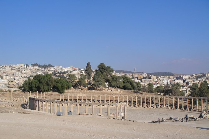 Jerash Half-Day Trip from Amman photo 1