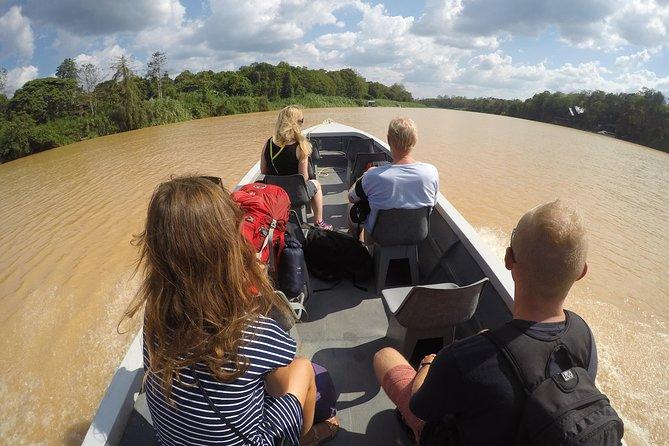 3D2N Kinabatangan Flusskreuzfahrt
