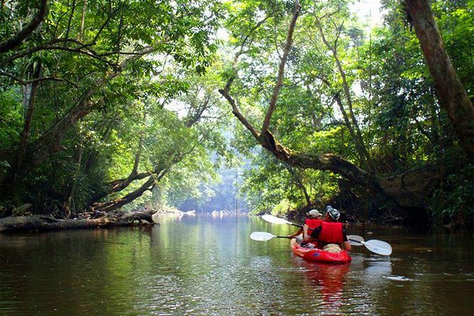 Ultimate Adventure Sarawak Borneo (Cycling, Kayak & Cave)