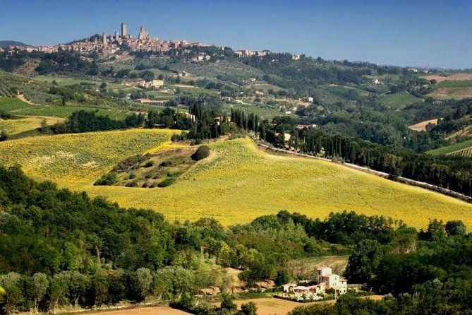 Siena and San Gimignano Day Trip from Rome