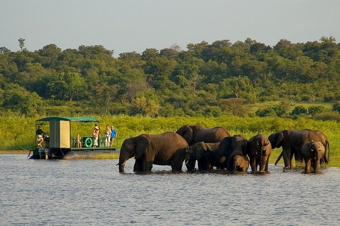 Chobe National Park 4X4 Day Safari and River Cruise