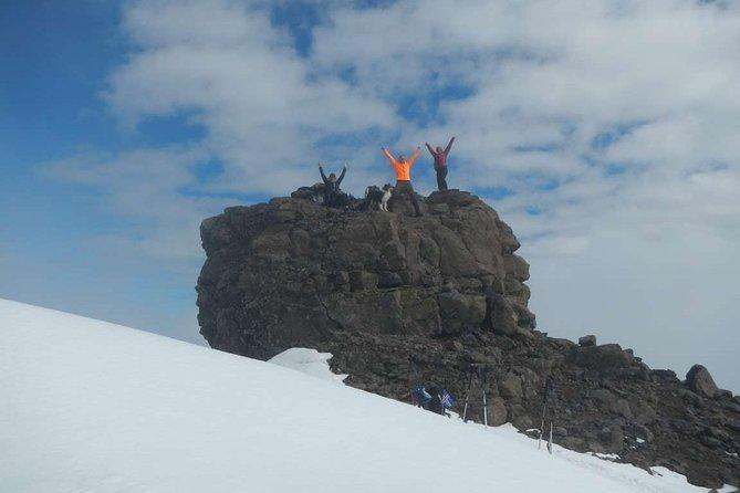 Excursión de un día en el monte Dyrfjoll desde Egilsstadir