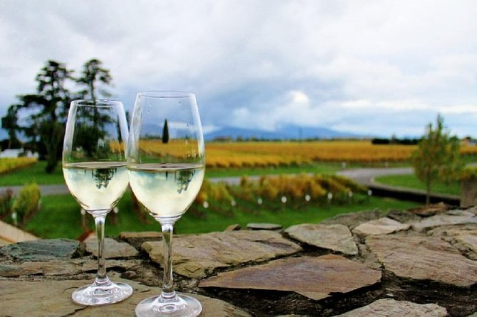 Progressive Wine and Gourmet Summer Trail of Marlborough